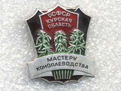 Новости трк братск сегодня видео