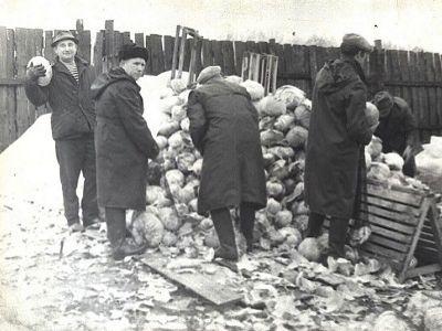 Сотрудники НИИ на овощебазе, 1980-е. Источник - fotointeres.ru