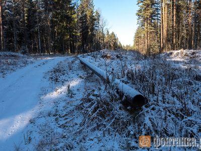 «Газпром» оплатил занедостроенный газопровод вПриозерске 1,7 млрд руб.