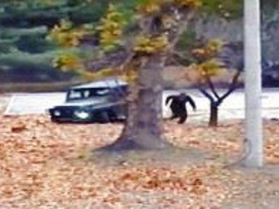 Побег северокорейского военного на Юг, 13.11.17. Скрин видео: www.youtube.com/watch?v=AUIKDwDmUoU